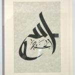 The-Divine-Protector-(Allah-Al-Hafeez)-(2012)---Razwan-Ul-Haq
